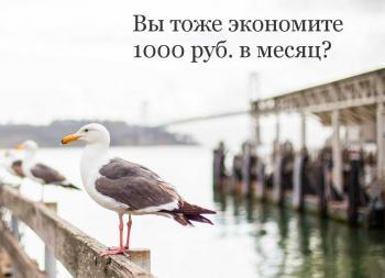 Вы тоже экономите 1000 руб. в месяц?